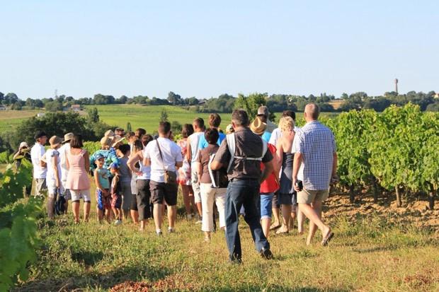 Blaye Côtes de Bordeaux - Nos festibalades