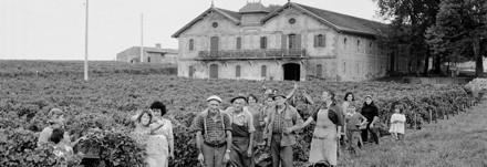 Blaye Côtes de Bordeaux - Notre histoire - XIXeme