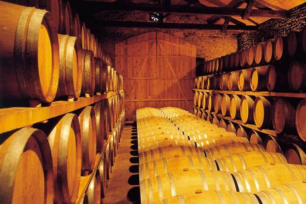 Blaye Côtes de Bordeaux - Nos châteaux